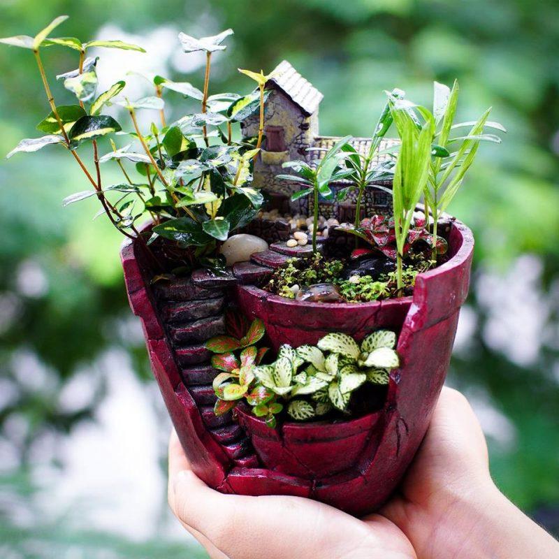 chậu trồng cây composite