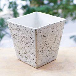 chậu cây cảnh - chậu gốm sứ vuông vát